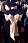 black_covers_champagne_gold_sashes