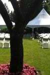 ivory_wrap_garden_ceremony