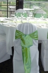 apple_green_sashes